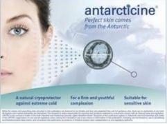 Antarcticine (Антарктицин) купити