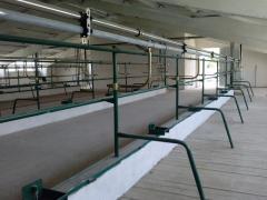 Будівництво та Реконструкція Корівників, Свинарників
