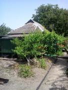Дача на Потемкинском острове, 5-й причал