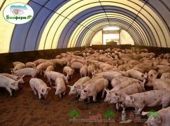 Ферментаційна підстилка Биоферм для тварин і птахів