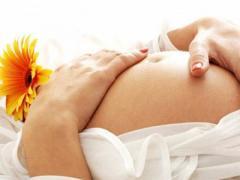 Клініка потребує сурогатних мам та донорів яйцеклітин