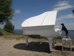 Купити кабінетний рояль в Києві,концертний рояль в Києві