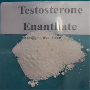 Legit Testosterone Enanthate Anabolic Steroid Dosage 250mg