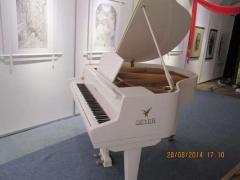Оренда білого рояля в Києві