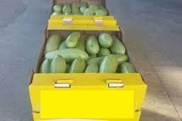 Тара під овочі на 10-12кг