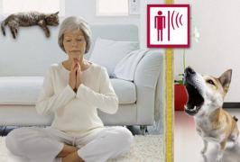 Звукоізоляція Mute забезпечить тебе тишею